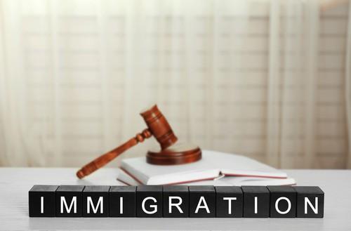 Michigan Immigration Law